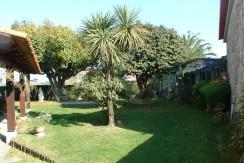Quinta-Areosa-viana-do-castelo-jardim-relva
