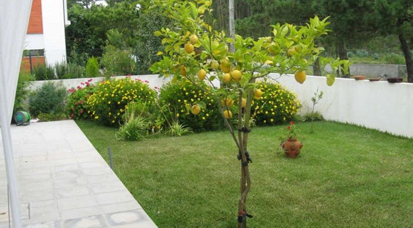 moradia-carreço-jardim
