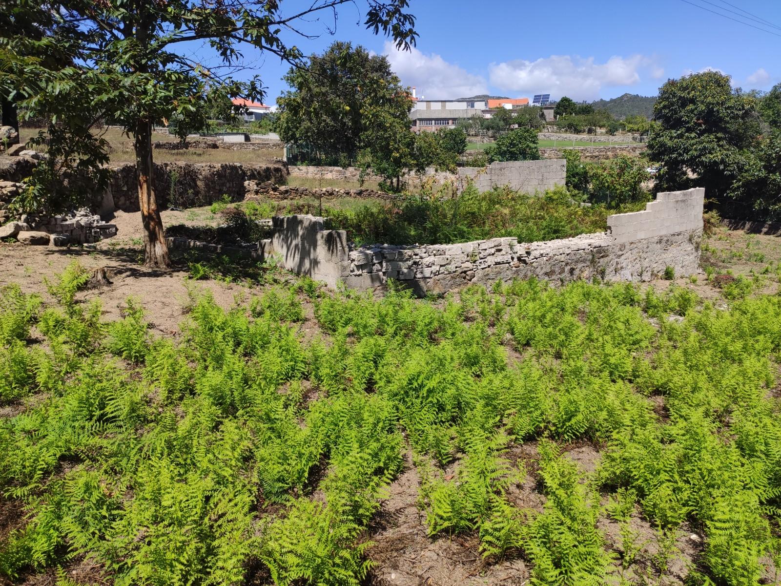 Terreno Para Construção Moradia